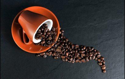 palarnie kawy, palarnia kawy, sklep kawy, sklep z kawą, sklepy z kawą, sklep z kawa, palarnia kawy warszawa, dobra kawa, kawa sklep, sklep z kawą warszawa, palarnia kawy kraków, palarnia kawy tarnów, palarnia kawy karmelicka, palarnia kawy olkusz, palarnia kawy krzeszowice, palarnia kawy bochnia, palarnia kawy kraków karmelicka, palarnia kawy węgrzce, palarnia kawy nowy sącz, palarnia kawy rumia, palarnia kawy polska, palarnia kawy piaseczno, palarnia kawy harmonia, palarnia kawy grodzisk mazowiecki,